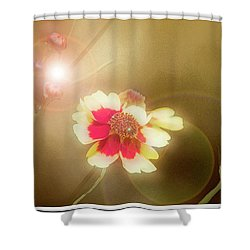 Coreopsis Flowers And Buds Shower Curtain