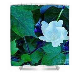 Cotton Blossom Shower Curtain by Eloise Schneider