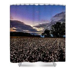 Cotton Patch  Shower Curtain