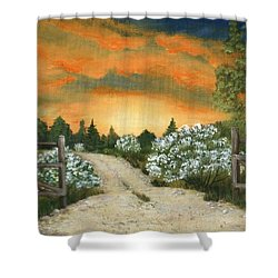 Shower Curtain featuring the painting Country Road by Anastasiya Malakhova