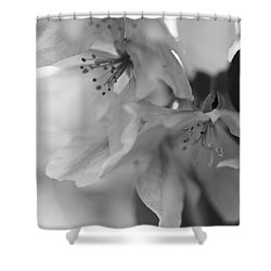 Crabapple Blossom Black And White Shower Curtain