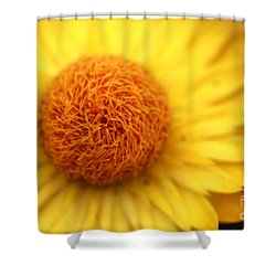 Shower Curtain featuring the photograph Crazy Spin by Stephen Mitchell