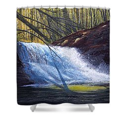 Creation Falls Shower Curtain