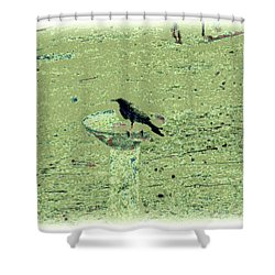 Crow And Bath Shower Curtain by YoMamaBird Rhonda