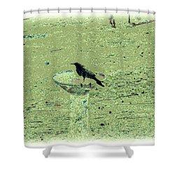 Crow And Bath Shower Curtain