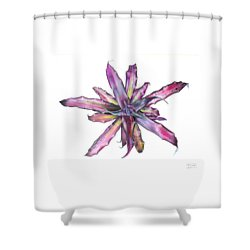 Cryptanthus Tropical Heat Wave Shower Curtain