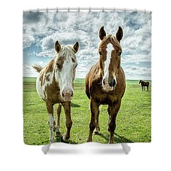 Curious Friends Shower Curtain