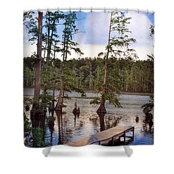 Shower Curtain featuring the photograph Cypress Swamp by Marty Koch