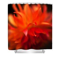 Dahlia Flame Shower Curtain by Mike Reid