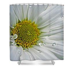 Daisy Shower Curtain by Elsa Marie Santoro