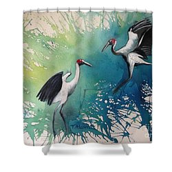 Dance Of The Brolgas - Original Sold Shower Curtain by Therese Alcorn