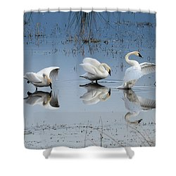 Dance Of The Trumpeter #1a Shower Curtain