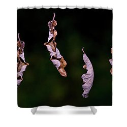 Dancing Leaves Shower Curtain