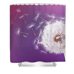 Dandelion Flying On Magenta Background Shower Curtain