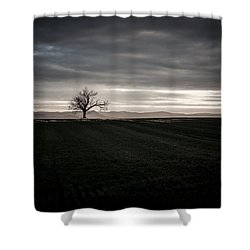 Dark And Light Shower Curtain by Miguel Winterpacht