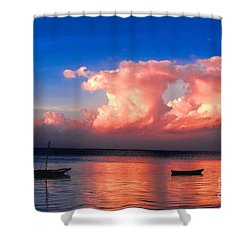 Dawn Shower Curtain by Pravine Chester