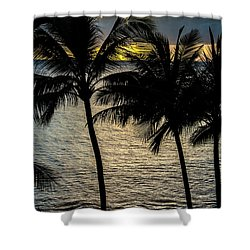 Day Is Done Shower Curtain by Colleen Coccia