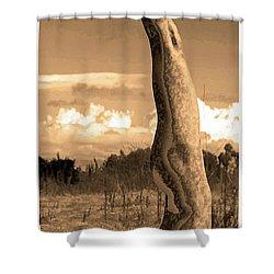 Death Of A Yogi Shower Curtain