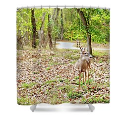 Deer Me, Are You In My Space? Shower Curtain