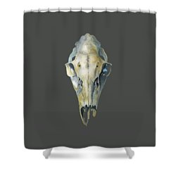 Deer Skull With Aura Shower Curtain by Catherine Twomey