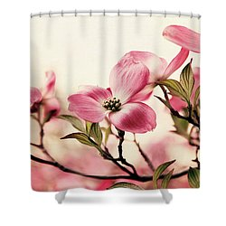 Shower Curtain featuring the photograph Delicate Dogwood by Jessica Jenney