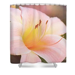 Delightful Daylily Shower Curtain