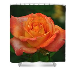 Desire Shower Curtain