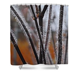 Dewdrops Shower Curtain by Kathryn Meyer