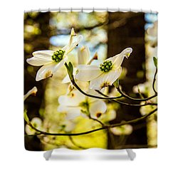 Dogwood Day Afternoon Shower Curtain