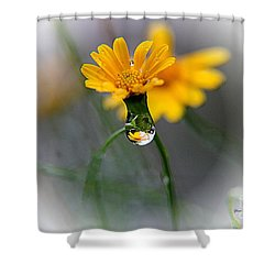 Double Yellow Shower Curtain