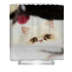 Dreaming Big Shower Curtain