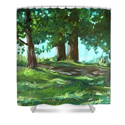 Dreaming On Fellows Lake Shower Curtain by Jan Bennicoff