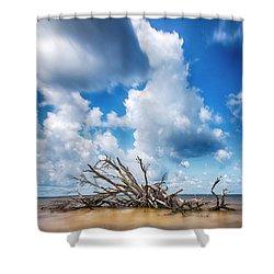 Shower Curtain featuring the photograph Driftwood Sky by Alan Raasch