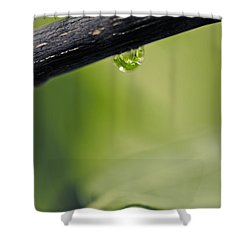 Shower Curtain featuring the photograph Droplet by Cendrine Marrouat