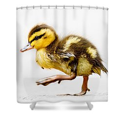 Duckling Parade Shower Curtain
