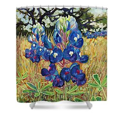 Shower Curtain featuring the painting Early Bloomers by Hailey E Herrera