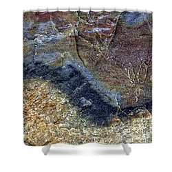 Earth Portrait 000-205 Shower Curtain