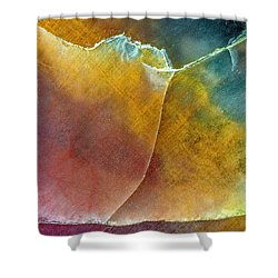 Earth Portrait 001 Shower Curtain