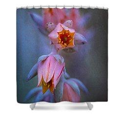 Echeveria Flowers Shower Curtain