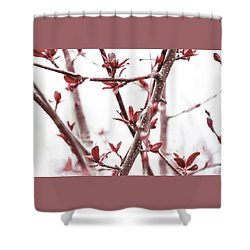 Emerge -  Shower Curtain