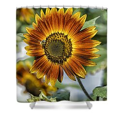 End Of Sunflower Season Shower Curtain