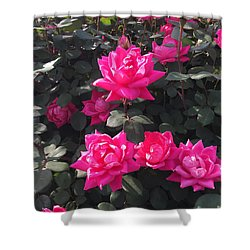 Enjoy The Simple Moments Shower Curtain
