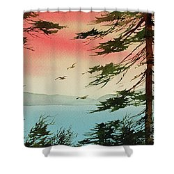Shower Curtain featuring the painting Evening Light by James Williamson
