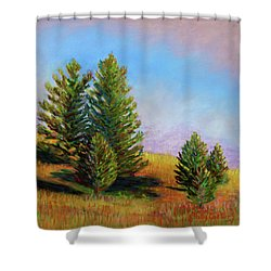 Evening Sun In Yellowstone Shower Curtain by Polly Castor
