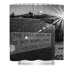 Examined Life Shower Curtain by Rhys Arithson
