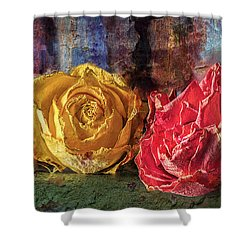 Faded Flowers Shower Curtain by Vladimir Kholostykh