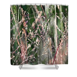 Fairies In The Grass - Shower Curtain