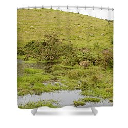 Shower Curtain featuring the photograph Fairy Tree In Ireland by Ian Middleton