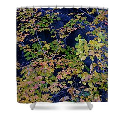 Fall Color Virginia West Virginia Shower Curtain