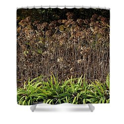 Fall Contrasts Shower Curtain by Deborah  Crew-Johnson